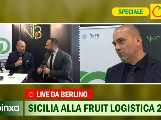 La logistica siciliana di Galigroup e Next to Business al servizio dell'agricoltura. Live dalla Fruit Logistica Berlino